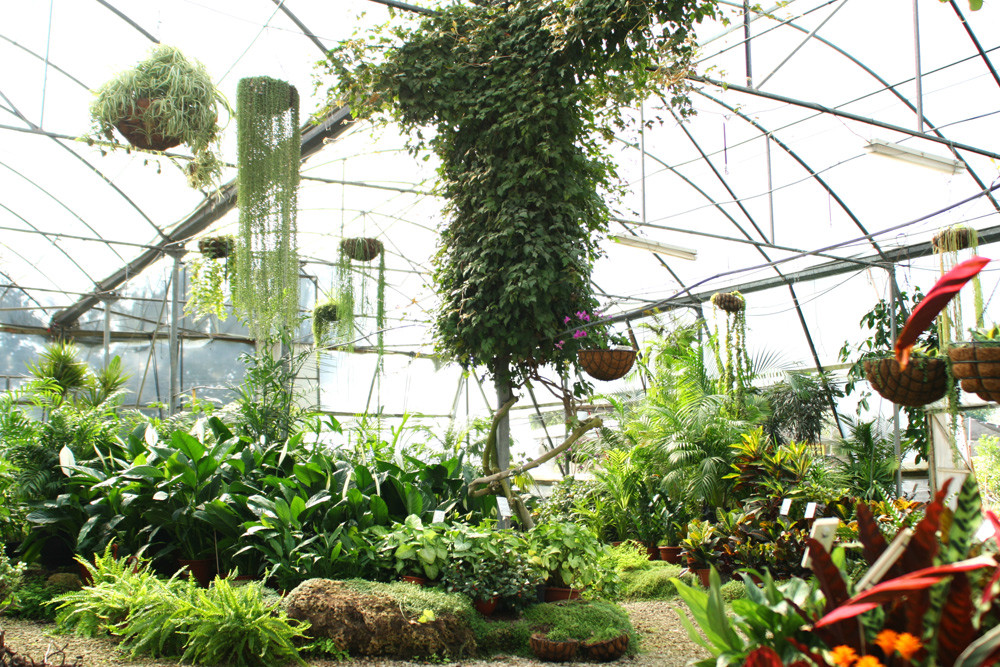 It's Greenhouse Time