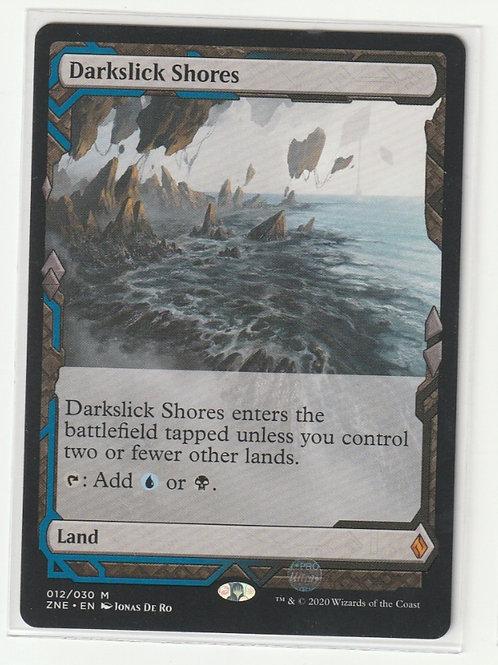 Darkslick Shores Zendikar Rising Expeditions #12/30