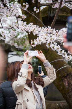 Japon_141