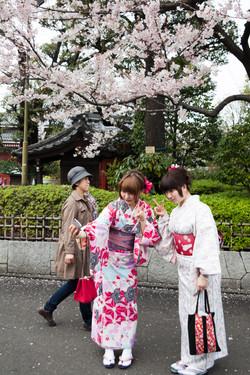 Japon_65