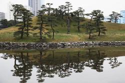 Japon_182