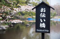 Japon_96