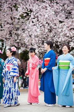 Japon_149
