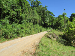 Estrada sentido Linha Carolina