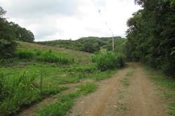 Toda a área a esquerda da estrada