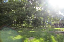 Aréa verde
