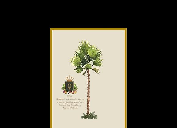 Quadro Palmeira