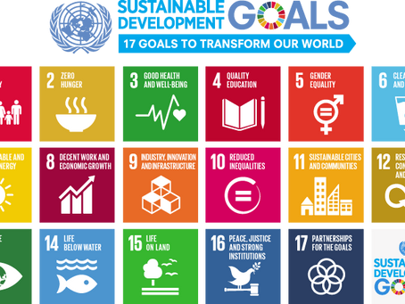 How can you contribute to the UN Global Goals