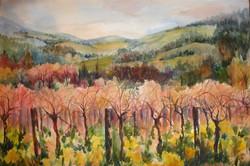 February Vines
