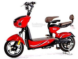 Buy an electric bike in Danang Vietnam
