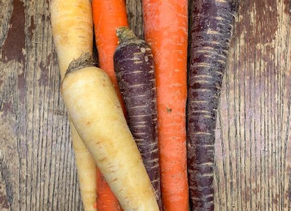 Organic Jumbo Rainbow Carrots