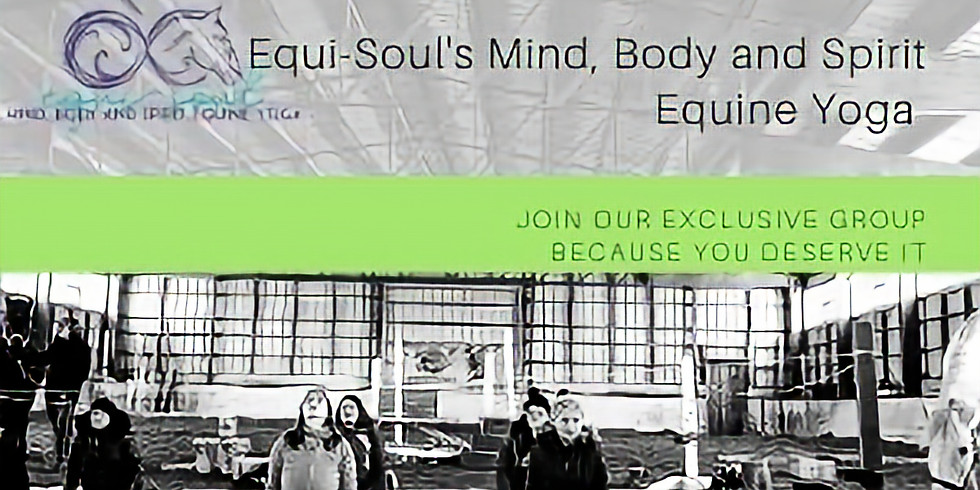 Mind, Body and Spirit Equine Yoga