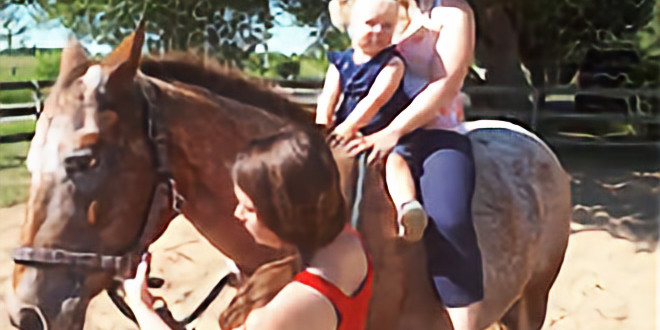 Mom's, Mares and Mini Me's