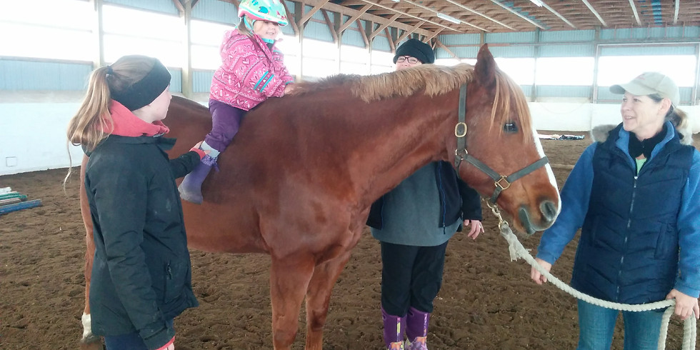 Mom's, Mares and Mini Me's!