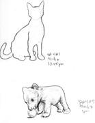 My Sketchbook: Cat & Bear