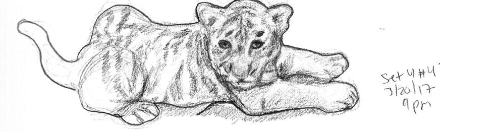 My Sketchbook Tiger