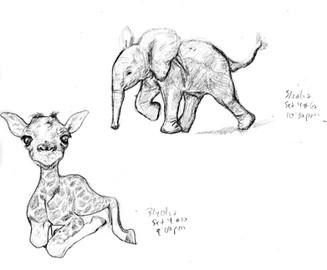 My Sketchbook: Giraffe and Elephant