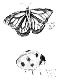 My Sketchbook: Butterfly and Ladybug
