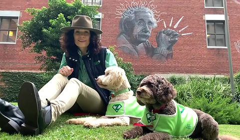 Wellbeing service, canine, life coach