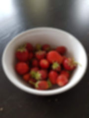 North Norwegian strawberries