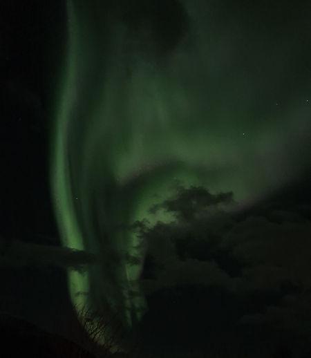 Aurora borealis at visitwolfden.com
