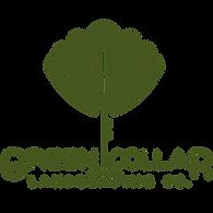 Dk Green Logo.png