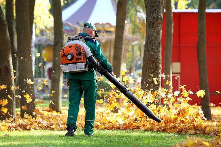 Fall leaf removal services for residential and commercial properties