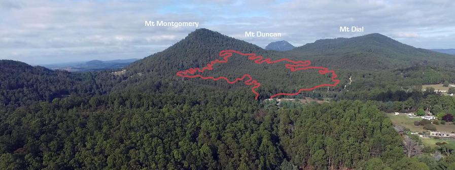 Mt Montgomery track .jpg