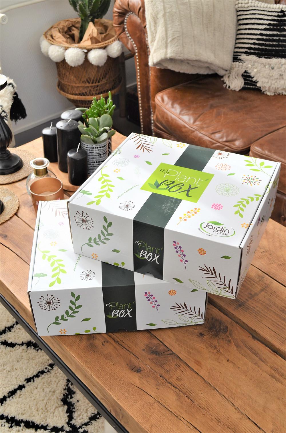 maplant'Box