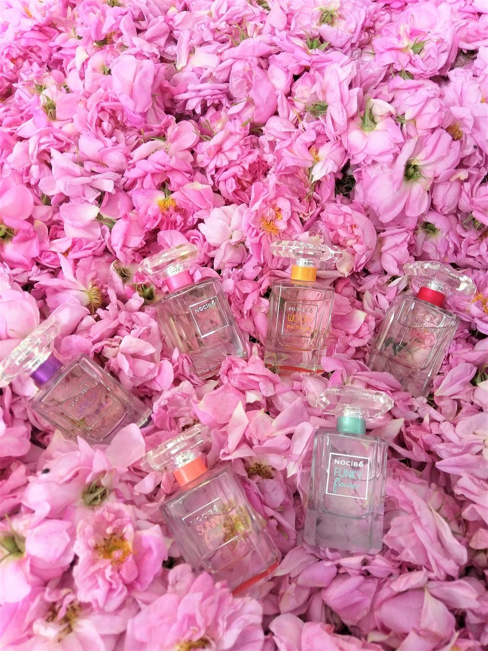parfums nocibé