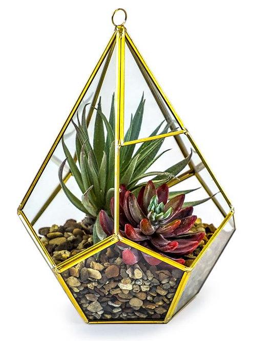 Gold Metal and Glass Terrarium