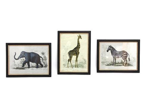 Safari Animal Print Frame