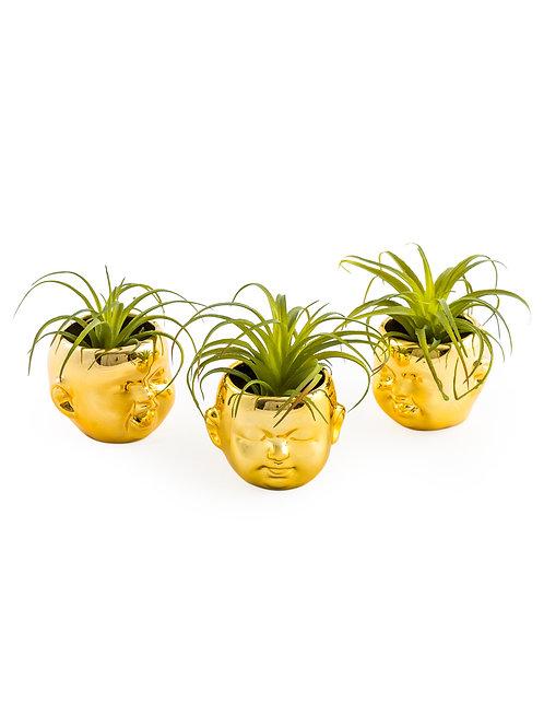 Set of 3 Mini Baby Head Planters
