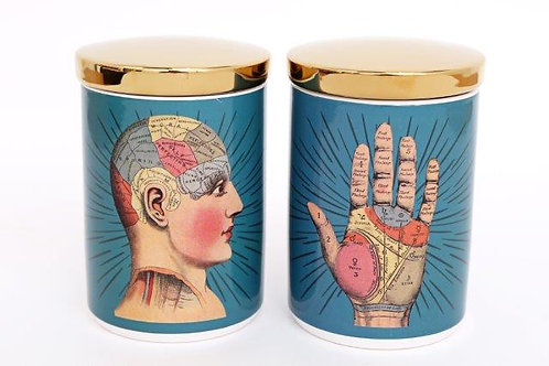 Phrenology Cannister