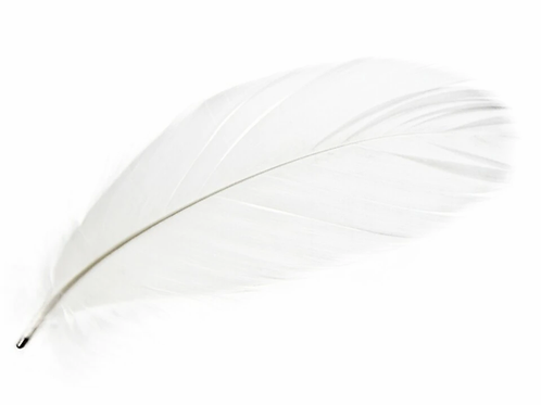 Magic Magnetic Feathers White