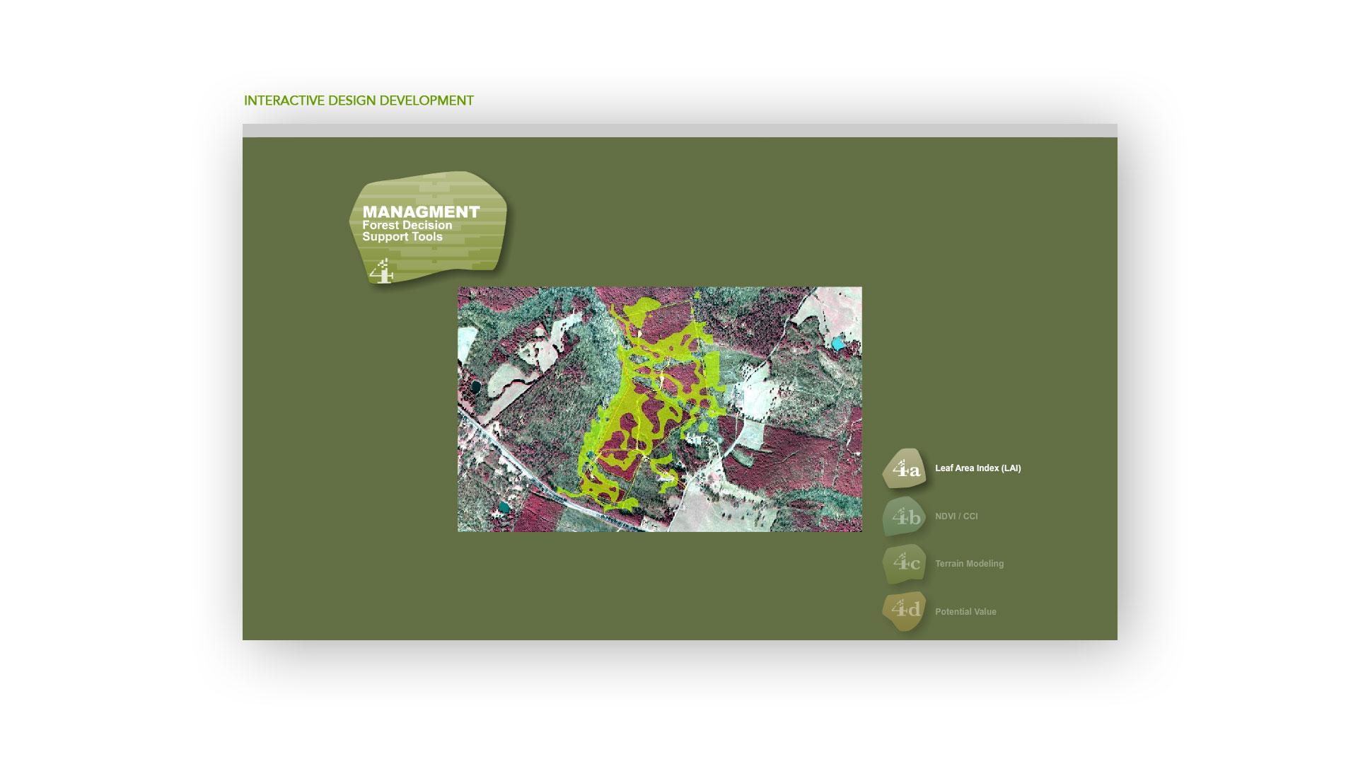 imagetree2.jpg