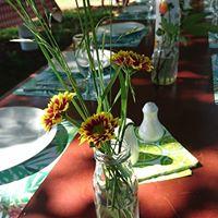 Little Forest plain table setting