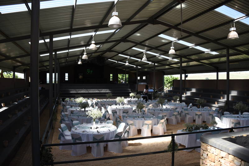 Strydom Arabian Stud reception