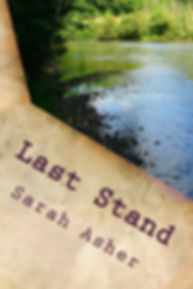 Last_Stand_Cover_for_Kindle.jpg