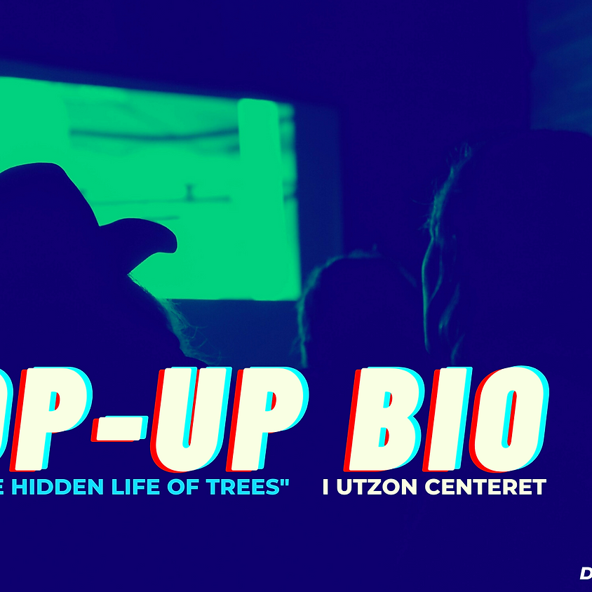 Pop-Up Bio: The Hidden Life of Trees