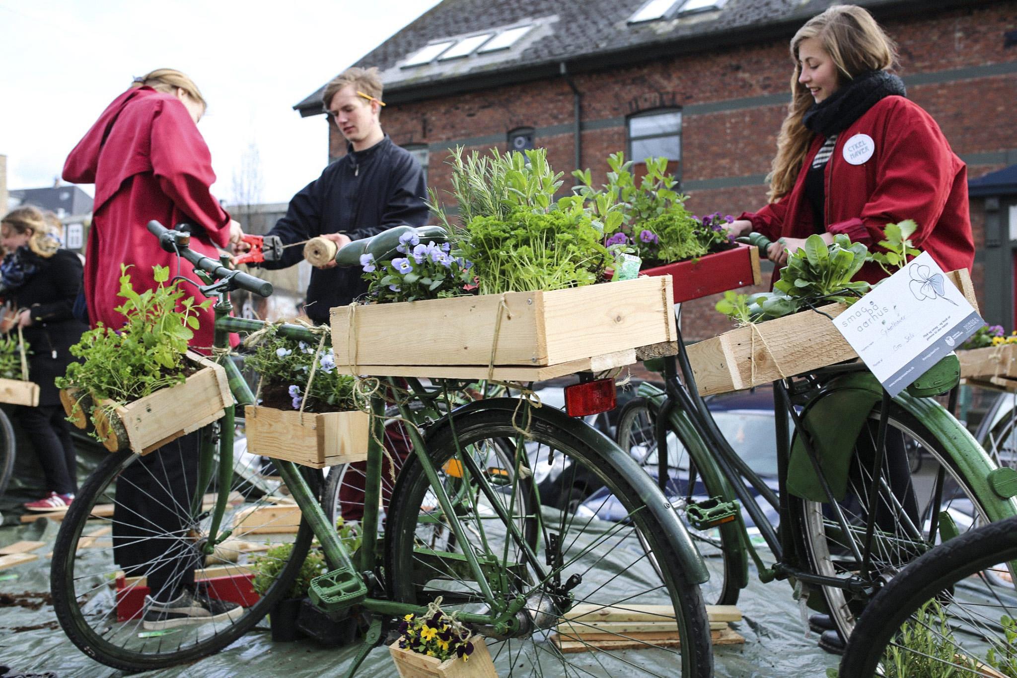 Cykel have