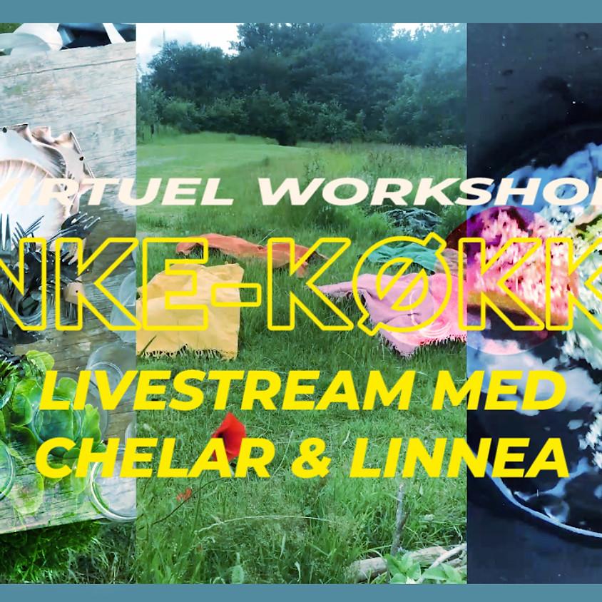 Virtuel Workshop: Sanke-køkken