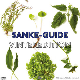 Sanke-guide: Vinter Edition