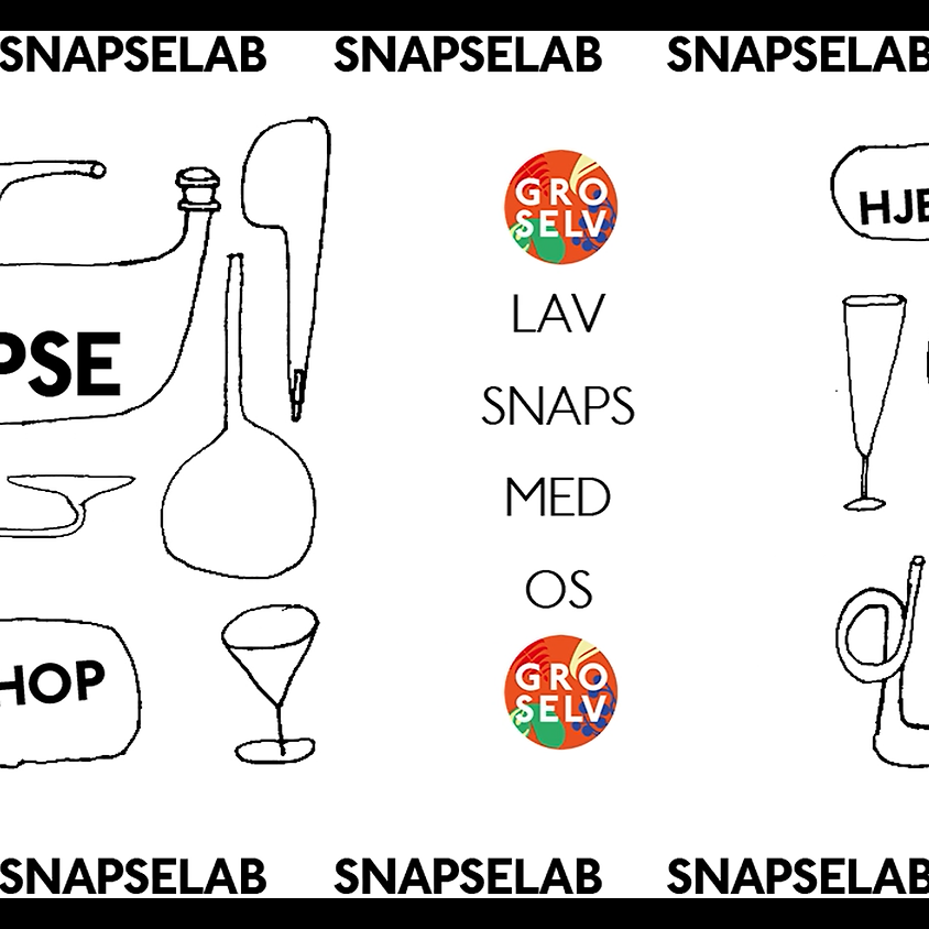SnapseLab med Leave No Trace & GRO SELV