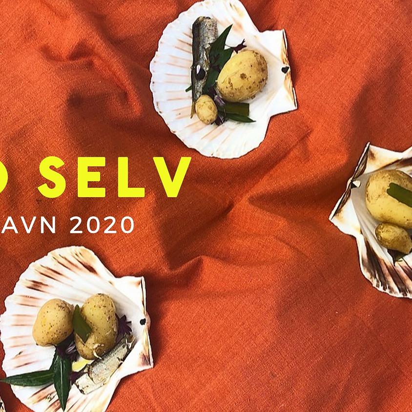 GRO SELV x Kulturhavn festival