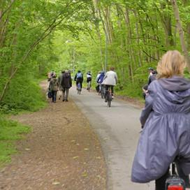 Idylliske cykelruter i Danmark
