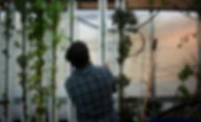 Bioteket_Plantevæg_Redigeret.jpg