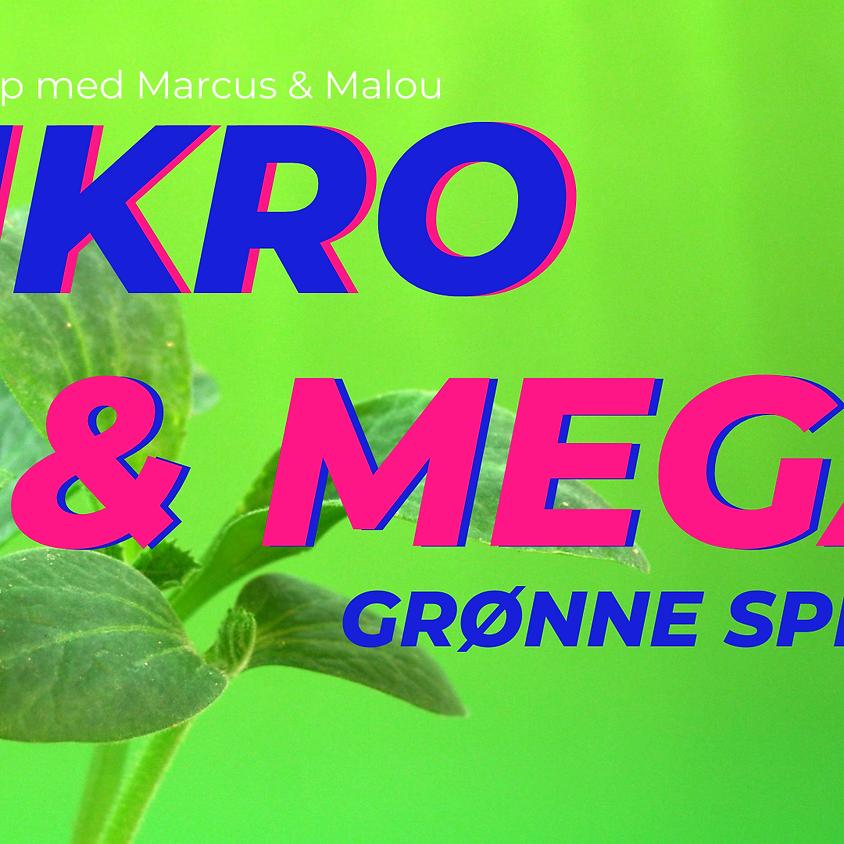 Mikrogrønt og Megagrønt: Spire workshop