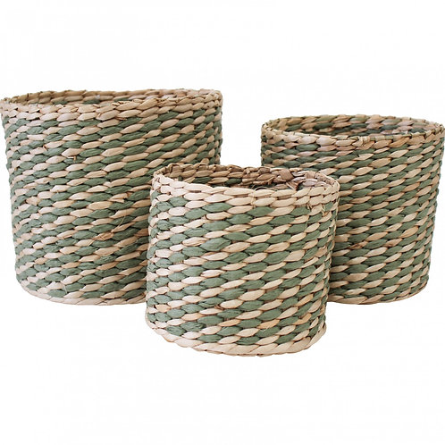 Sage Baskets