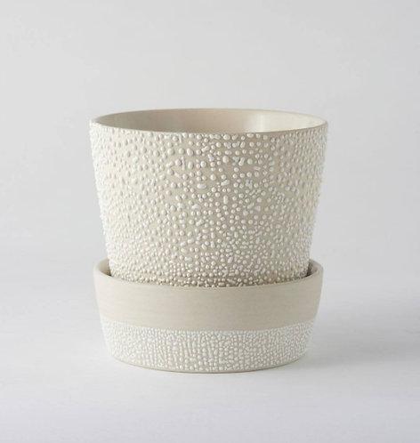 Water Bead Planter Pot